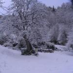 Chiuso per neve